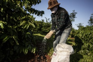 Farming methods Coffee Climate Care projectVietnam