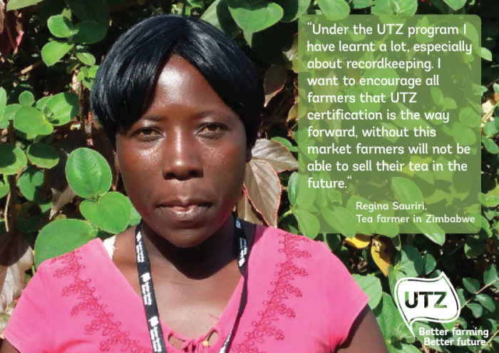 UTZ tea farmer quote Regina Sauriri Zimbabwe