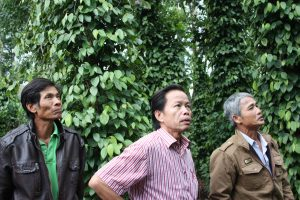 Nguyen Thu Truc and Thiet Nguyen in the coffee fields, Vietnam