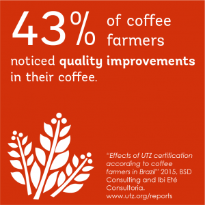 Impact on better crop in the coffee sector in Brazil