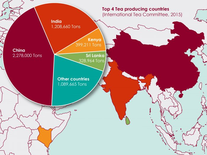China, India, Kenya and Sri Lanka, the top 4 tea producing countries in the world