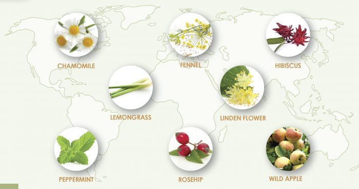 Herbal tea world map