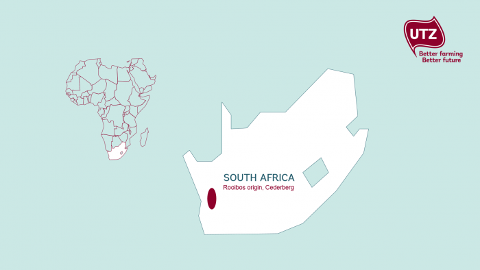 map of Rooibos origin, Cederberg, South Africa