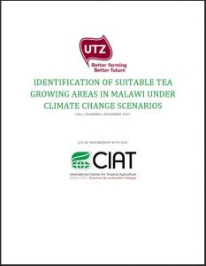 Cover CIAT report climate change tea production Malawi