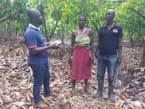 Field coordinator Isaac Addo with workers Joseph Kwaku Boakye and Jennifer Hunkple.