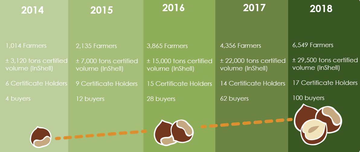 UTZ 5 years of UTZ hazelnuts: why this is the time for cocoa